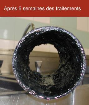 Traitement bactérien des réseaux et bacs à graisse 75 Paris